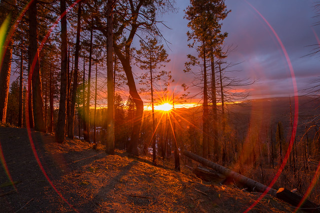 Mountain Light.
