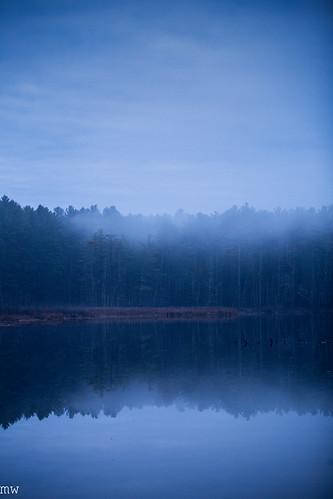 thanksgiving forest fog new england nature hiking landscape