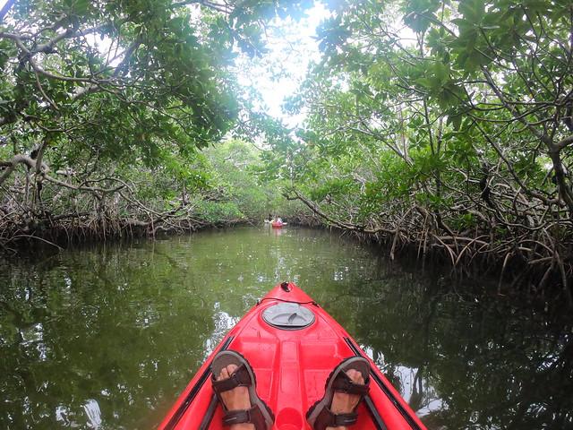 Kayak PM March 16 2021