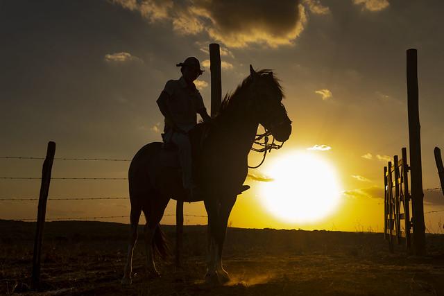 (explore 44 - 03/10/2021) Cowboy at Sunset / Vaqueiro no Por do Sol