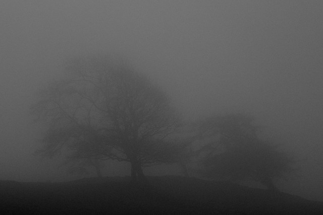 The Magnificent Seven all but lost in the mist