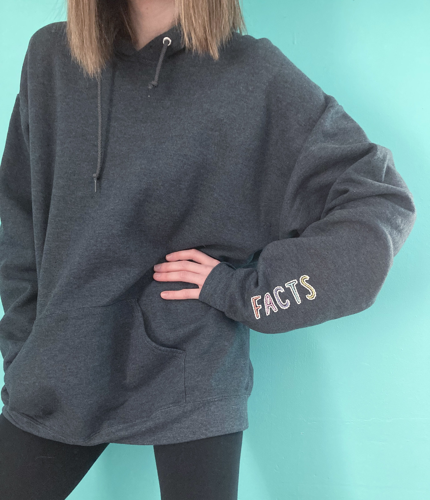 Hand Embroidered Facts Sweatshirt