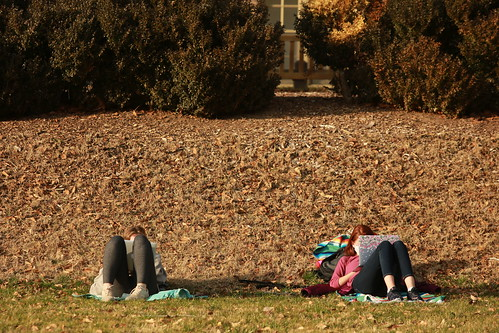 Students practice 6-foot-social-distancing protocols while studying in the Sunken Garden.