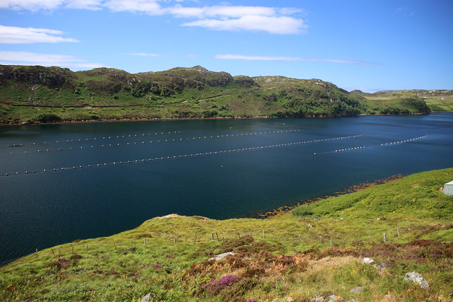 Loch Inchard near Rhiconich
