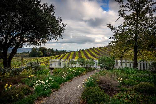 jack london historic historical park state author beauty ranch ca california vineyards grapes wine sonoma county glen ellen charmian cottage garden