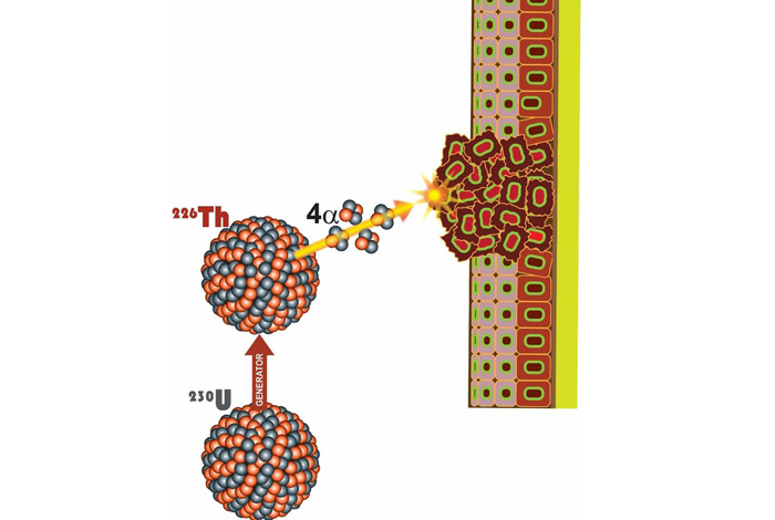 Cancer tissue being bombarded by targeted alpha particles. The generator developed by Los Alamos National Laboratory holds uranium-230, which decays to thorium-226. Further decay produces short-lived daughter isotopes, emitting four more alpha particles resulting in a very high combined radiation dose to destroy cancer cells.