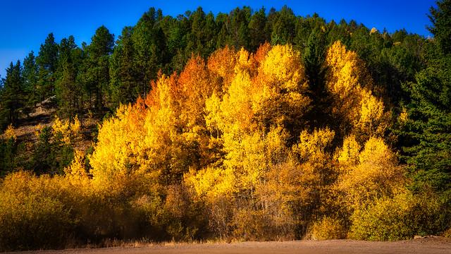 ColoradoSprings_495-Edit