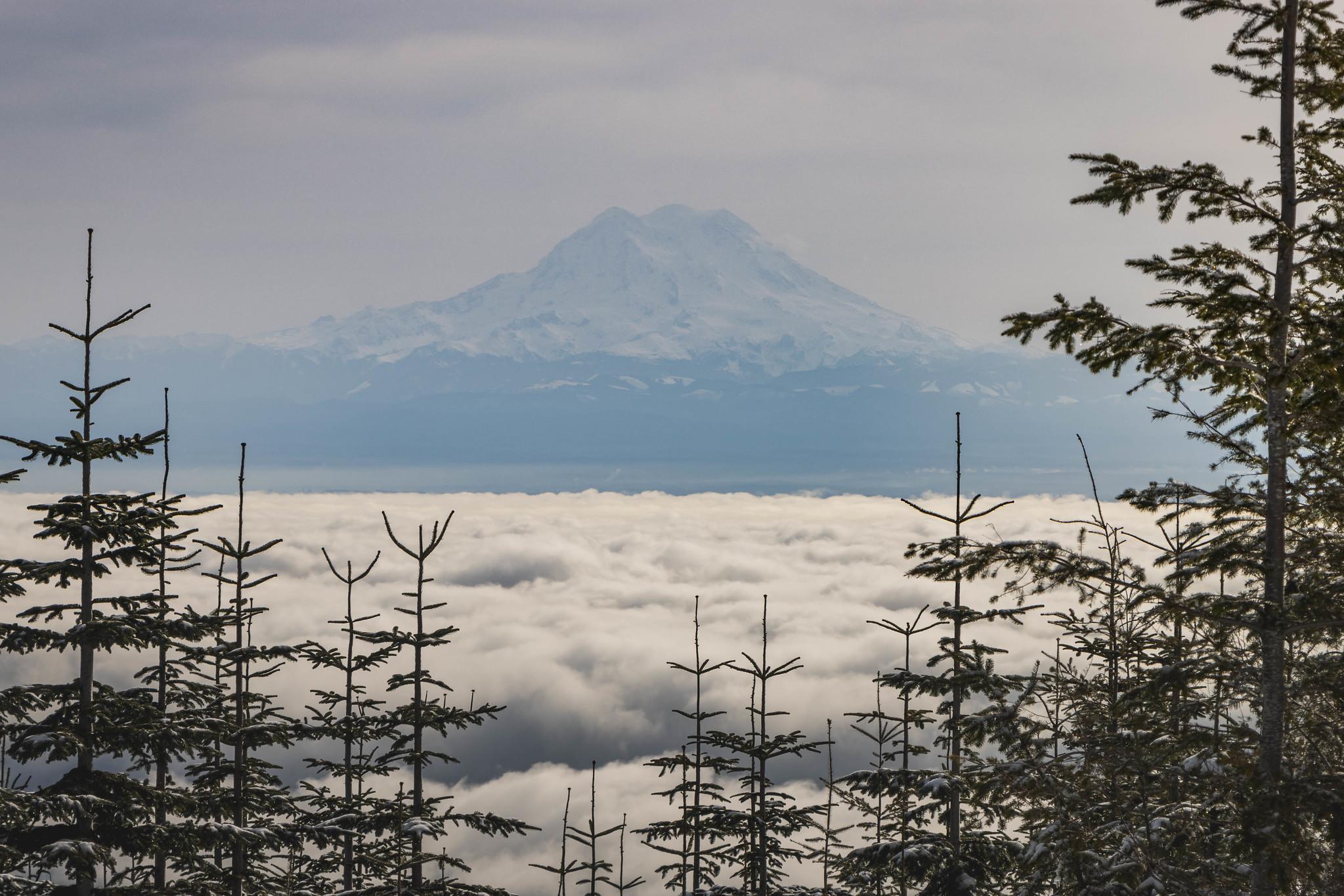 Mount Rainier from Capitol Peak