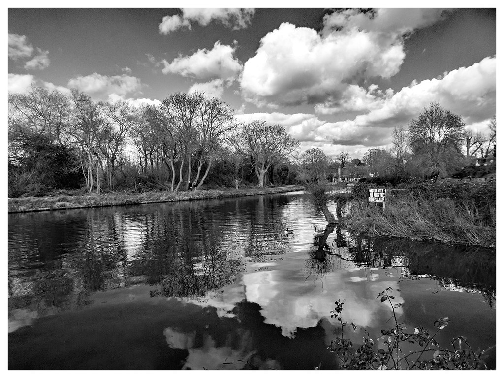 Reflections on the River Cam