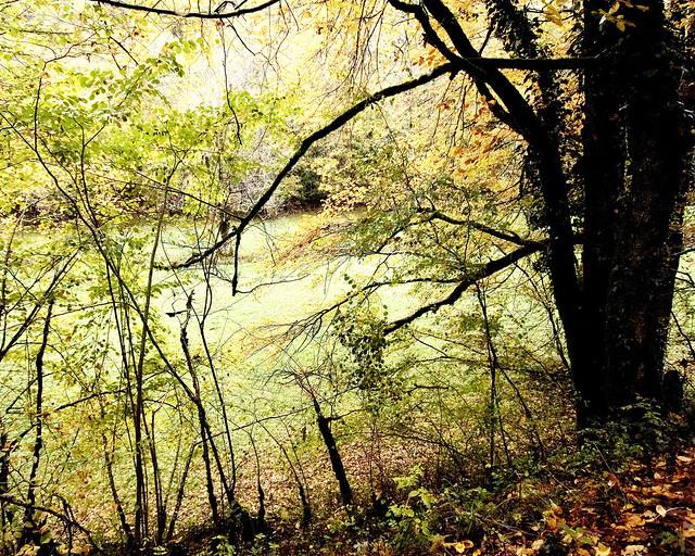 Autumn In Quercy #8