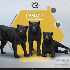 [REZZ ROOM] PANTHER ANIMESH COMPANION