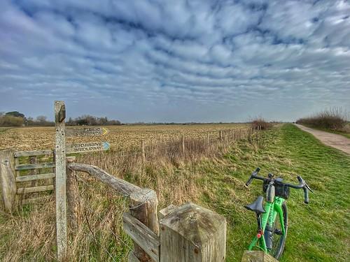 Chichester gravel loop - Near Earnley