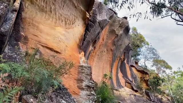 Golden Cliffs