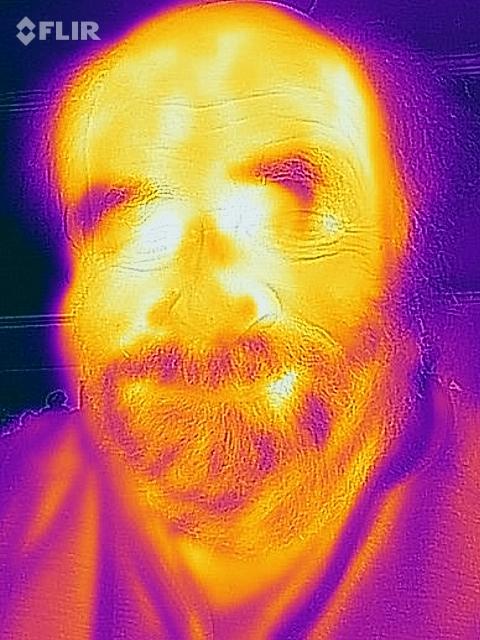 Thermal imaging selfie