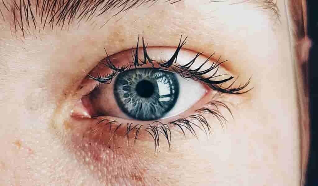 un-lien-entre-la-bêta-amyloïde-et-la-perte-de-la-vision