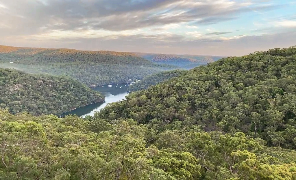 Berowra Valley National Park