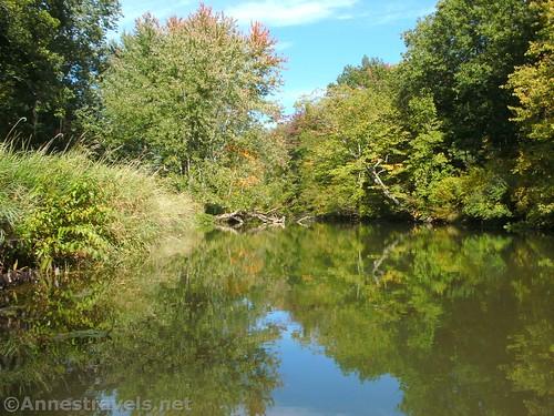 Reflections in Black Creek, Churchville, New York