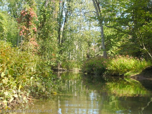 Black Creek near where we turned around, Churchville, New York