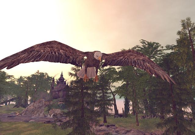 Elvion 2021 - Eagle's Flight