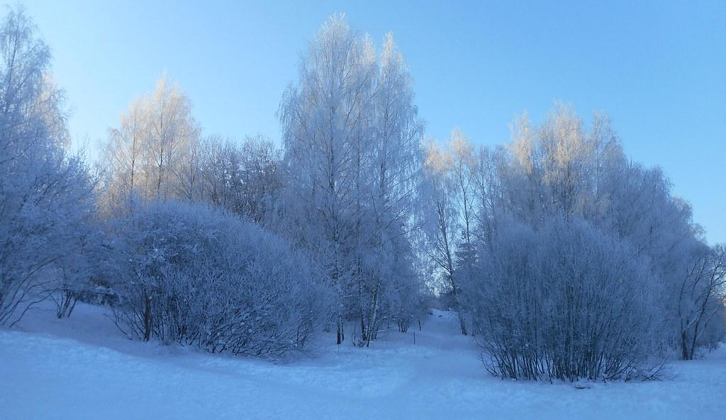 Winter Impressions 54