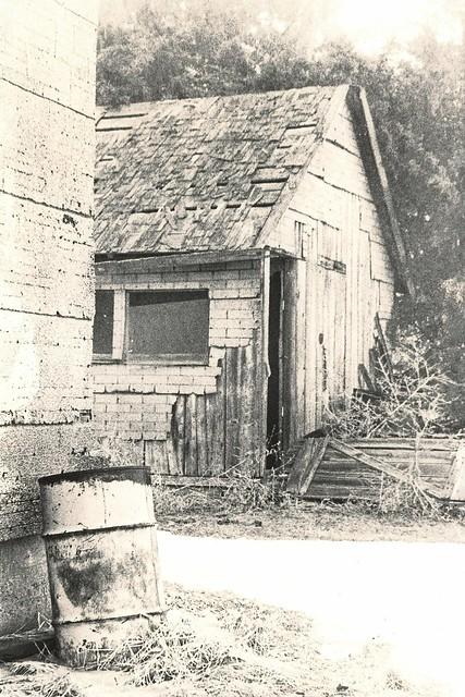 455 - Pete's Farmyard - Lith Print