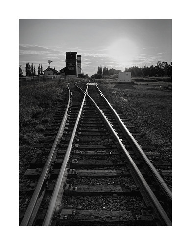 stalbert train traveling sunset underneath moody nikon observing illustration mood view grainelevators vanveenjf bw rails glare steel alberta canada black white leadinglines composition