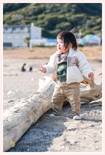 浜辺の流木と小さな男の子 冬の海