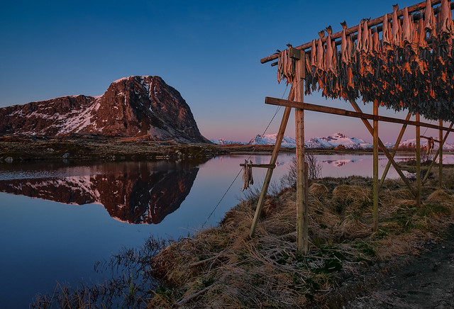 Dried  fish, Norway