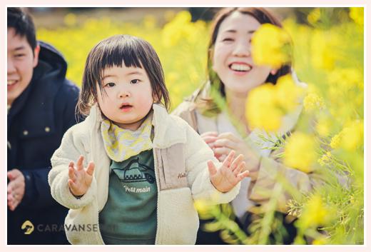 菜の花畑でファミリーフォト ロケーション撮影