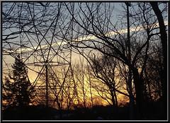 Contrail at sunrise