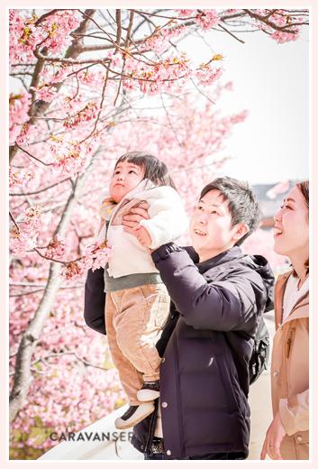 免々田川 菜の花・桜まつり(愛知県田原市) 渥美半島 家族写真