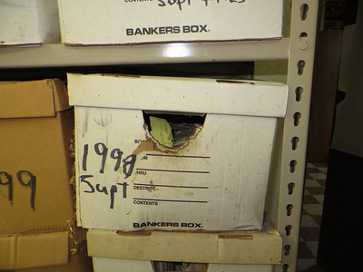 Photo shows several paper boxes on a metal rack. In the center of a photo, the handle of the box has been enlarged and brown staining from rodent sebum is present below the opening.