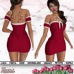 Fitted Dress - Krissi