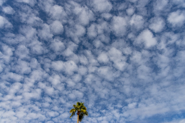 Clouds - IMGP3888