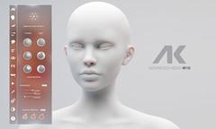 AK Advanced W10 Skin Fair 2021