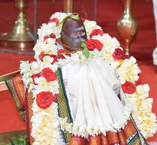 Shivaratri Celebration in Vidyalaya : Photo Gallery