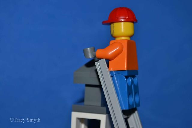 Ladder (66/365)