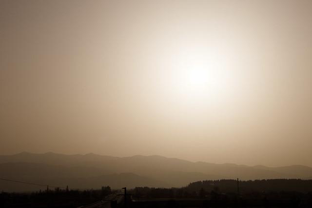 Zirbitz in Saharasand