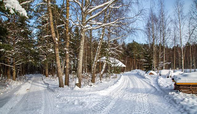 Estonia Open Air Museum in winter