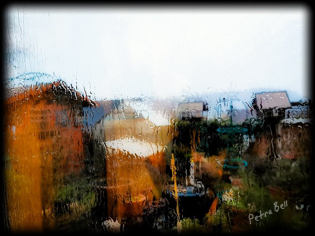 Rainy day, garden impressions - very abstract ️