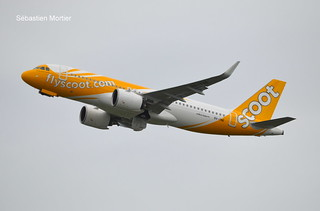 320.271-NEO SCOOT 9V-TNE 10241 DELIVERY FLIGHT Home Scoot Home 12 03 21 TLS