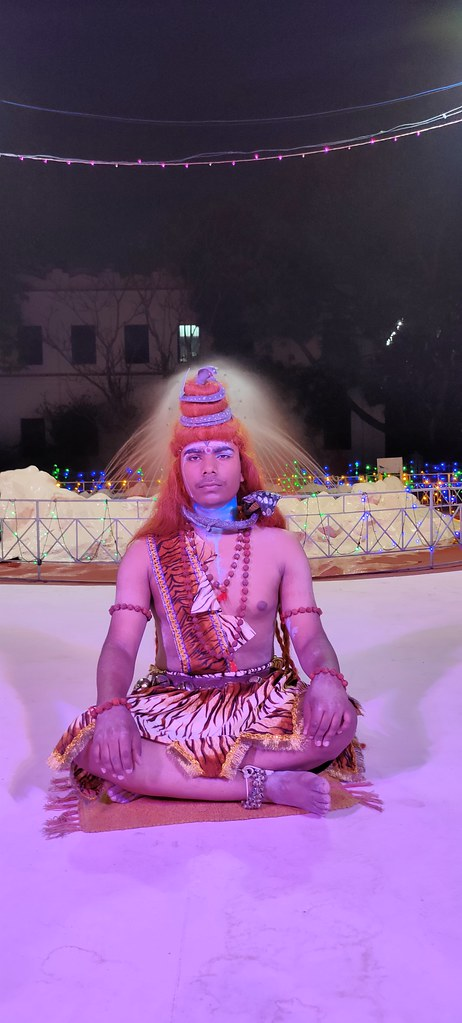 Maha Shiva Ratri (174)