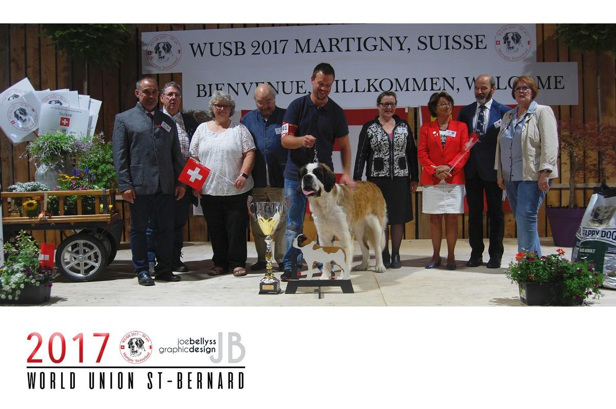 2017 WUSB Martigny