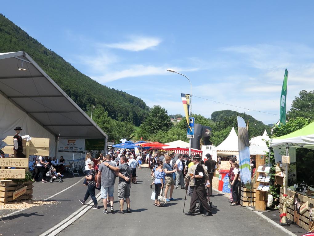 2019 Jodlerfest - Festival de yodel - Mümliswil 2019