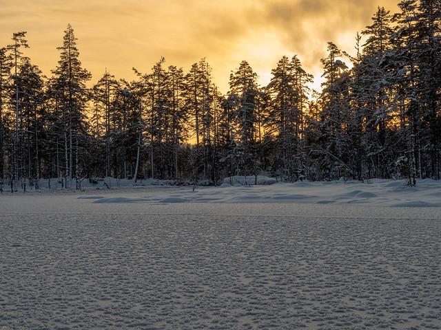 Ice flowers on the frozen river Gjermåa