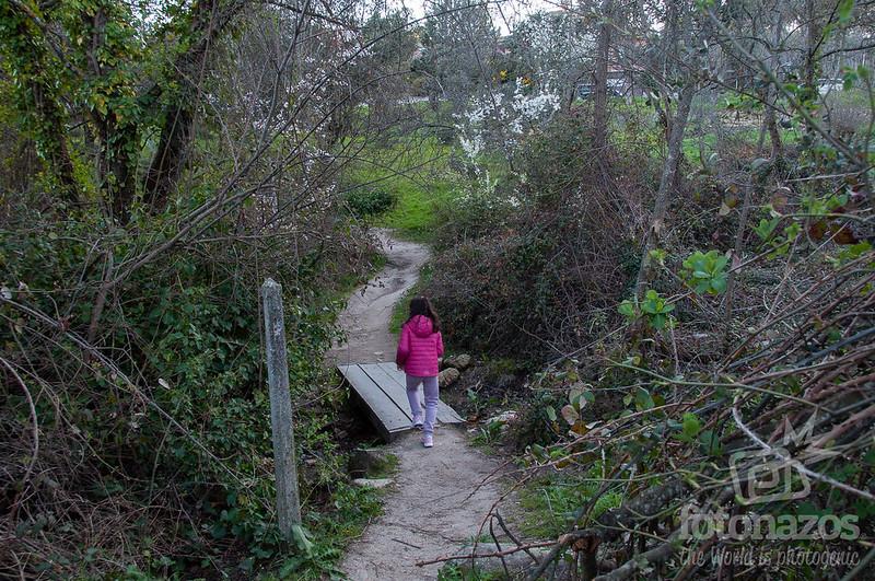 Ruta Embalse de Peñascales y Arroyo Trofas en Torrelodones
