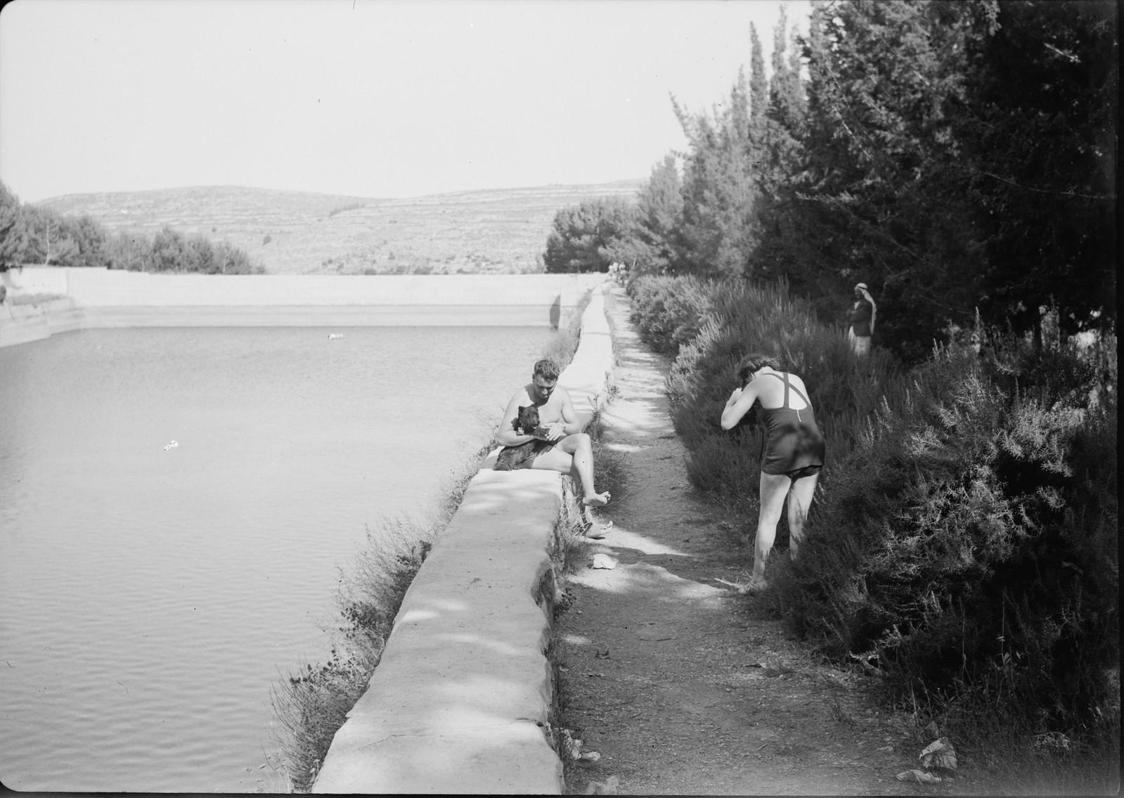 03. Вид на средний бассейн. Супружеская пара с собакой