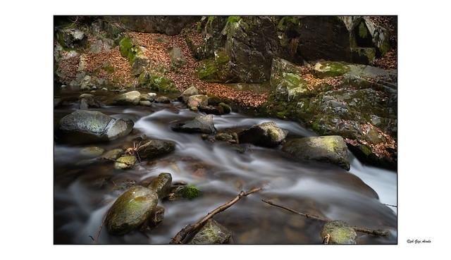 Tessuolo-Nikon 24mm f2,8 AIS