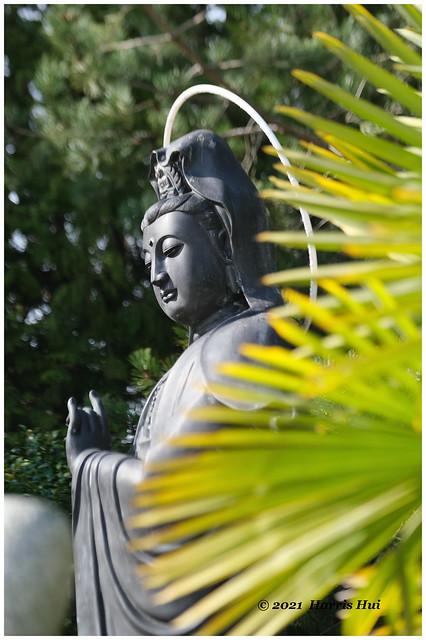 Mercy - Buddhist Temple XTT0843e