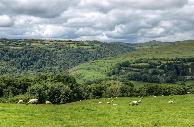 The Dart Valley near Dartmeet, Dartmoor